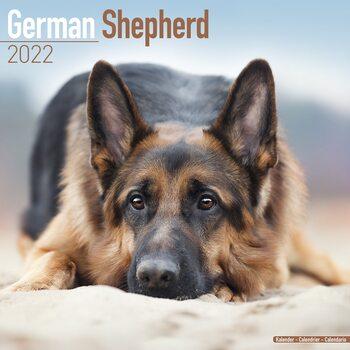 Calendário 2022 German Shepherd