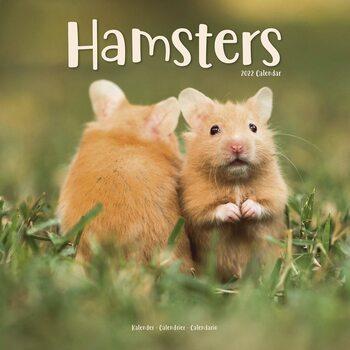 Calendário 2022 Hamsters