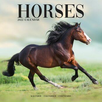 Calendário 2022 Horses