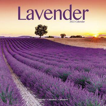 Calendário 2022 Lavender