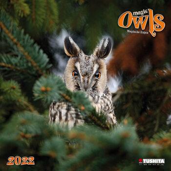 Calendário 2022 Magic Owls