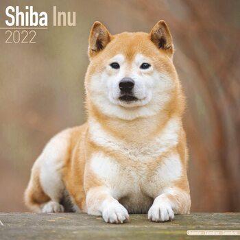Calendário 2022 Shiba Inu