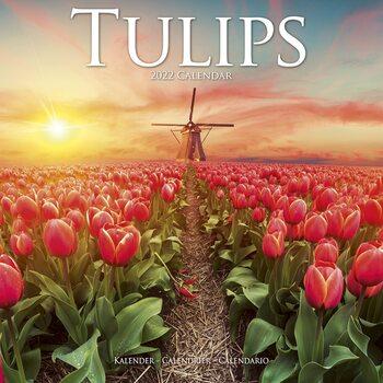 Calendário 2022 Tulips