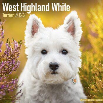 Calendário 2022 West Highland Terrier