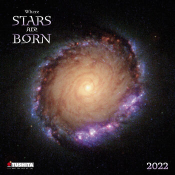 Calendário 2022 Where Stars Are Born
