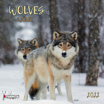 Calendário 2022 Wolves