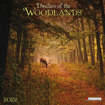 Calendário 2022 Woodlands