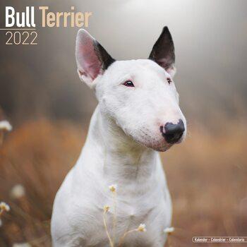 Calendar 2022 Bull Terrier