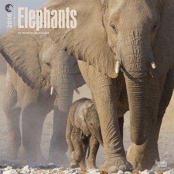 Calendar 2016 Elephants