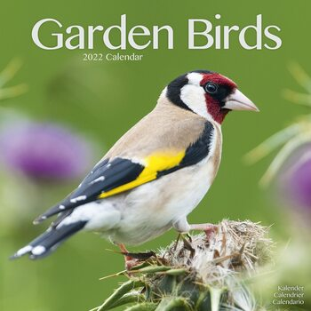 Calendar 2022 Garden Birds