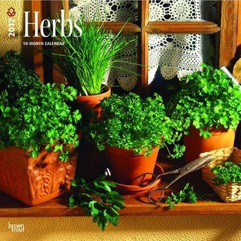 Calendar 2022 Herbs
