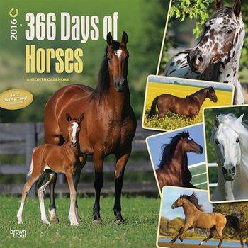 Calendar 2016 Horse 2