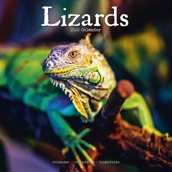 Calendar 2022 Lizards