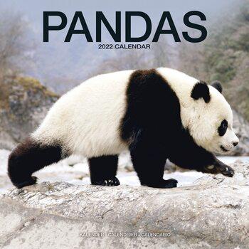 Calendar 2022 Pandas
