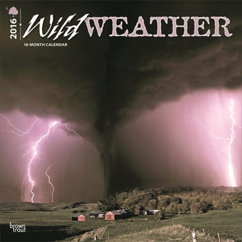 Calendar 2022 Wild Weather