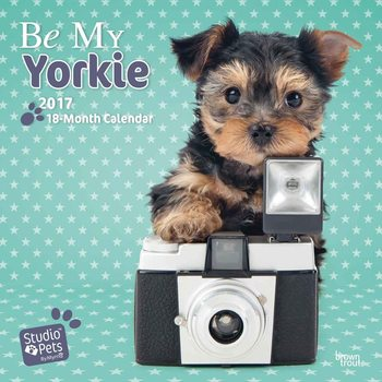 Be My Yorkie Calendrier 2017