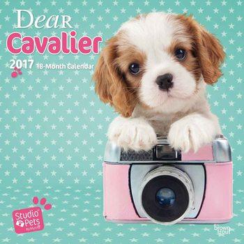 Dear Cavalier Calendrier 2017