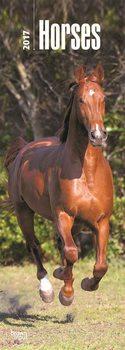 Horses Calendrier 2017