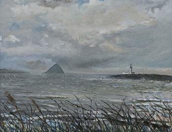 Ailsa Craig from Arran, 2007, Canvas Print