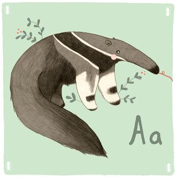 Canvas Print Alphabet - Anteater