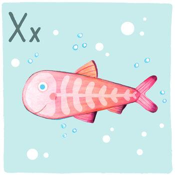 Canvas Print Alphabet - X-Ray-Fish