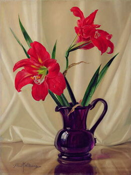 Canvas Print Amaryllis Lillies