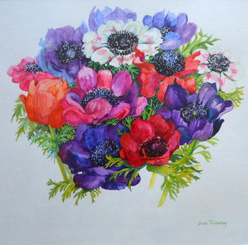 Anemones: red, white, pink and purple, 2000, Canvas Print