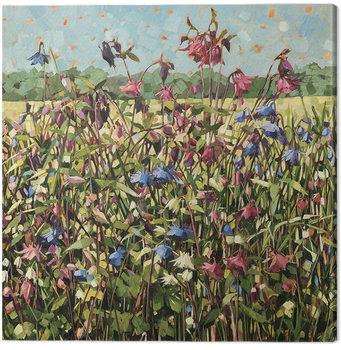 Canvas Print Anne-Marie Butlin - Aquilegia