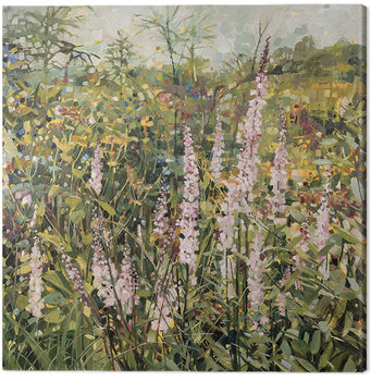 Canvas Print Anne-Marie Butlin - Sussex Garden
