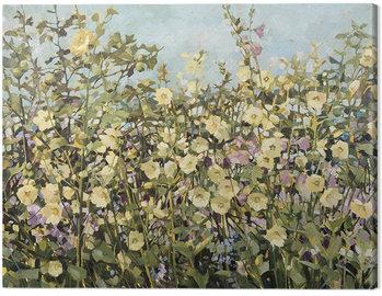 Canvas Print Anne-Marie Butlin - Yellow Hollyhocks