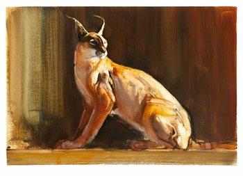 Arabian Caracal, 2010 Canvas Print