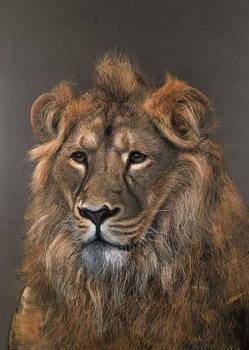 Asiatic Lion, 2015, Canvas Print