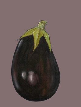 Aubergine, 2003 Canvas Print