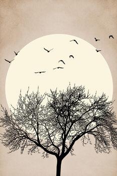 Autumn Dreamers Canvas Print