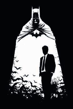 Canvas Print Batman - Secret Identity