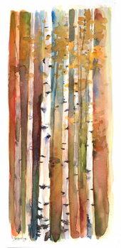 Birches in Autumn, 2013, Canvas Print