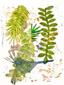 Botanical jungle Canvas Print