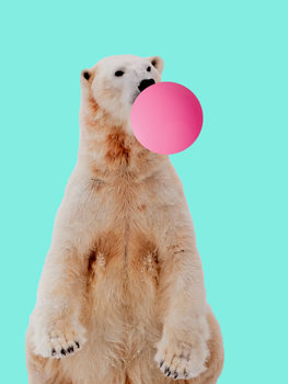 Bubblegum polarbear Canvas Print
