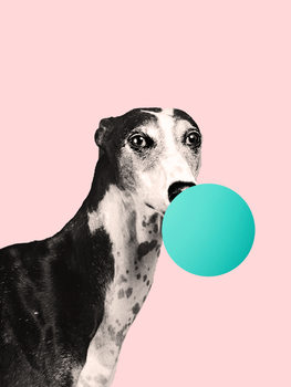 bubblegumdog Canvas Print