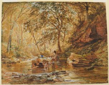 Cadzow Burn, 1856 Canvas Print