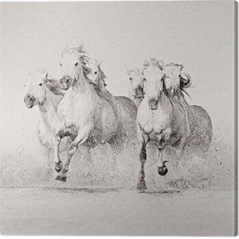 Canvas Print Carys Jones - Splash