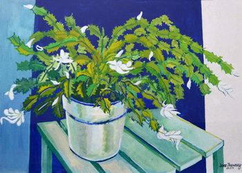 Christmas Cactus,2000 Canvas Print