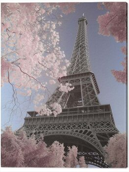 Canvas Print David Clapp - Eiffel Tower Infrared, Paris