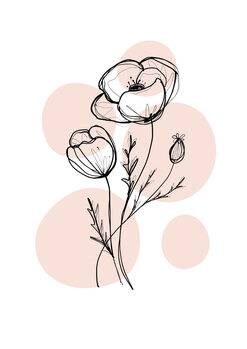 Canvas Print Delicate Botanicals - Poppy