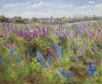Delphiniums and Poppies, 1991 Canvas Print