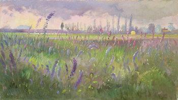 Canvas Print Delphiniums, Storm passing, 1991