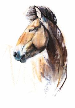 Desert Spirit (Przewalski), 2013, Canvas Print