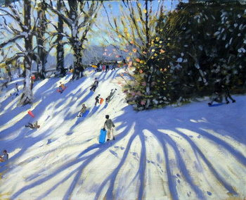 Early snow, Darley Park Canvas Print