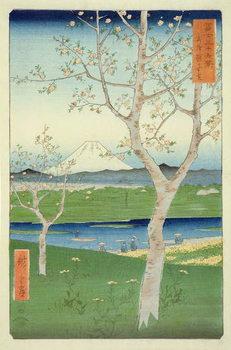 Fuji from Koshigaya, Mushashi, No.14 from the series '36 Views of Mt. Fuji', ('Fuji Saryu Rokkei'), Canvas Print