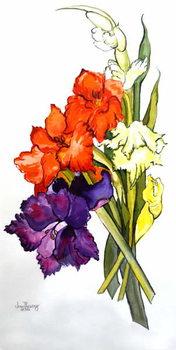 Gladioli, 2011 Canvas Print